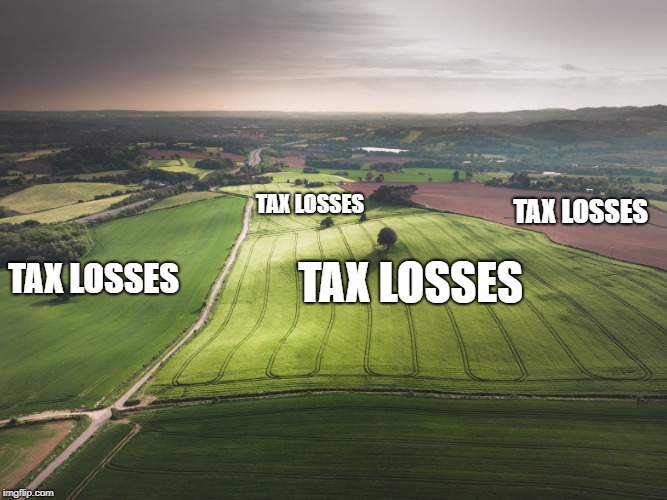 Tax losses